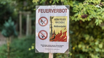 Das Feuerverbot im Wald und in Waldesnähe bleibt im ganzen Kanton St.Gallen verboten. Das Benutzen der offiziellen Feuerstellen ist also nicht erlaubt. (Bild: Hanspeter Schiess)