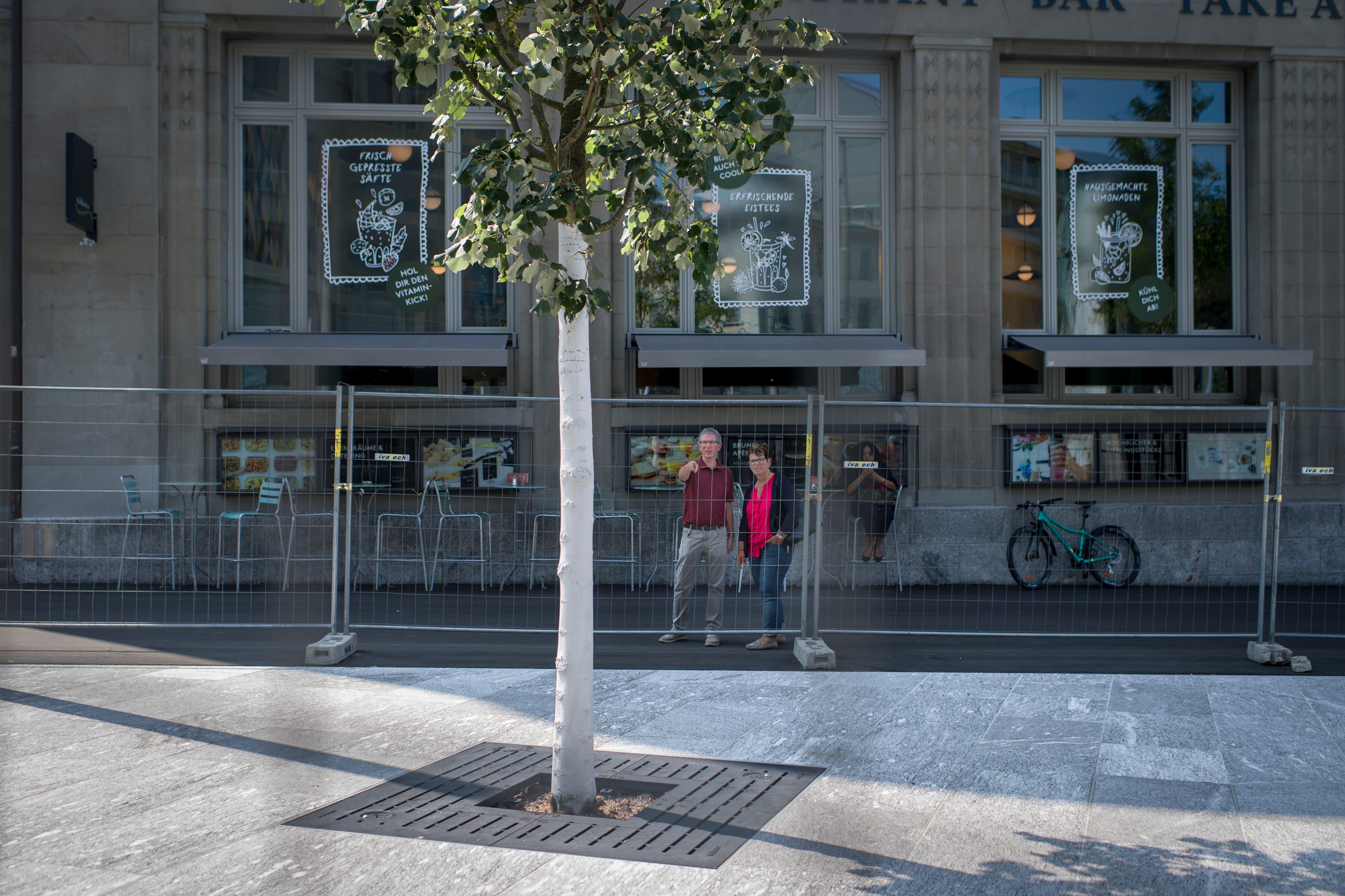 Auf dem Kornhausplatz stehen jetzt bereits wieder Bäume, die allerdings noch etwas wachsen müssen, bis sie wirklich als Schattenspender dienen können. (Bild: Benjamin Manser - 21. August 2018)