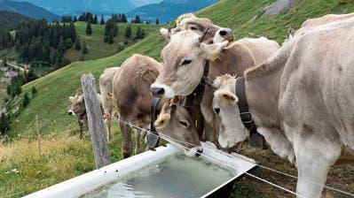 Älpler-Verband: «Es gilt, das Thema Klimaanpassungen prioritär zu behandeln»