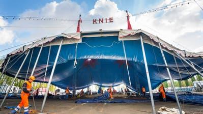 Das Zirkuszelt hat ausgedient, das neue Chapiteau soll dieselbe Farbe und Grösse haben. (Bild: Andrea Stalder, Kreuzlingen, 18. April 2017)