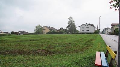 Die Bauvisiere auf der Mörschwiler Burgerwiese wurden in den vergangenen Tagen entfernt. (Bild: Perrine Woodtli)