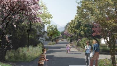 So wird's in der Kuonimatt kaum: Verkehrsberuhigende Gestaltungselementeund Bäume entlang der Strasse wie von den Planern vorgeschlagen, kommen schlecht an - es handelt sich um Privatstrassen. (Visualisierungen: PD)