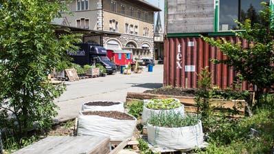 Blick ins Lattich-Quartier auf dem alten St.Galler Güterbahnhof. (Bild: Sabrina Stübi - 31. Mai 2018)
