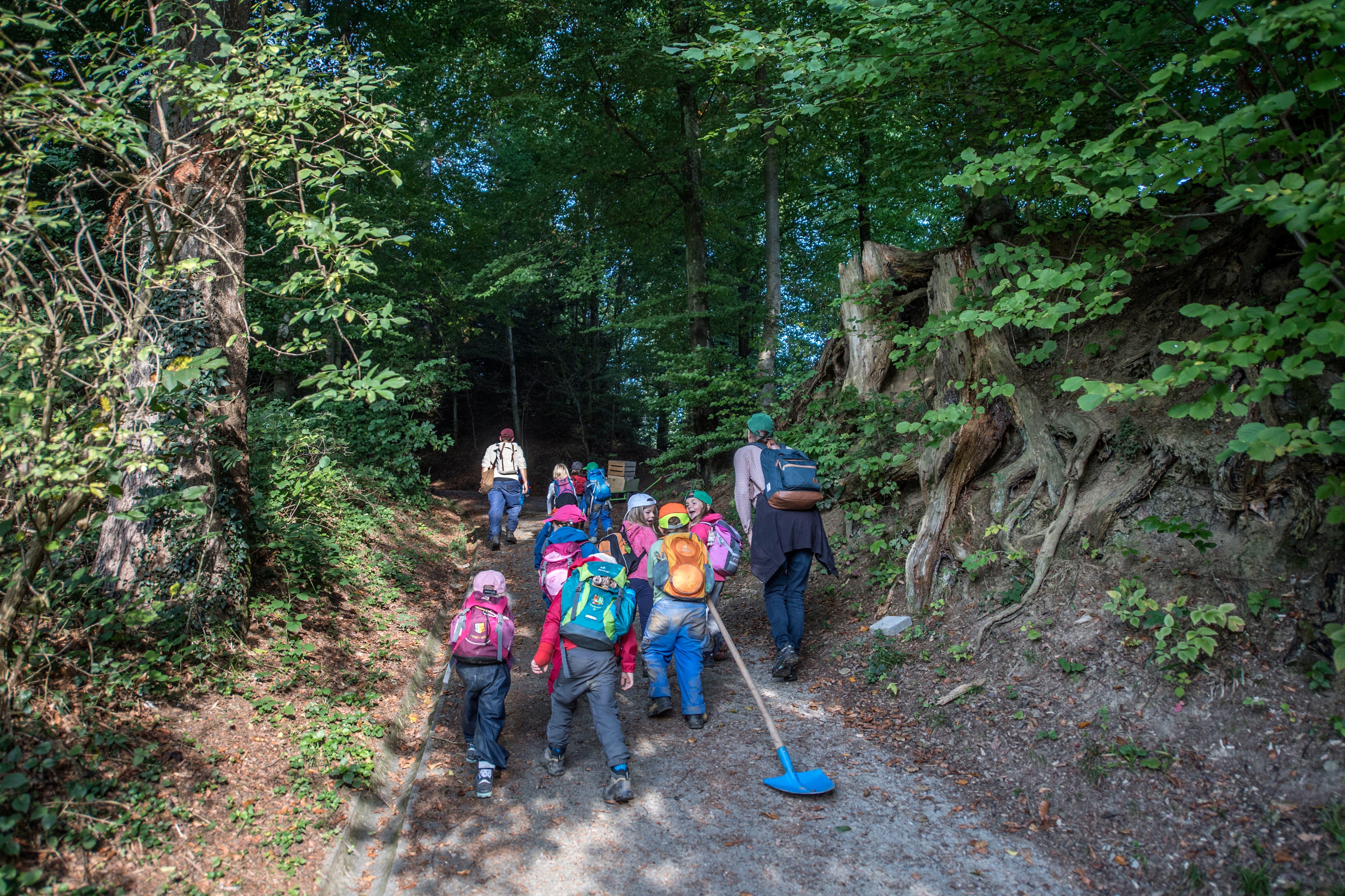 Hier können sich die Kinder entscheiden, ob sie den steinigen, steilen Weg oder den gewöhnlichen Wanderweg nehmen möchten. (Bild: Pius Amrein, Rothenburg, 19. September 2018)