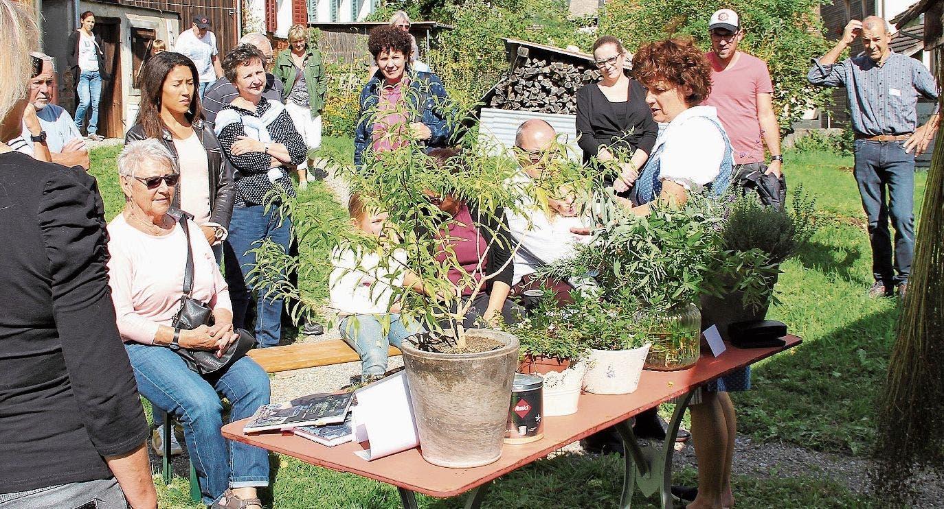 Angela Deiss erzählte einer grossen Gruppe vom Räuchern mit einheimischen Kräutern. (Bild: Bilder: Katja Bellino)