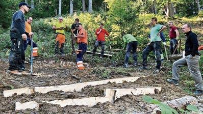 Das Wegstück im Dürrenbach-Wald ist nun für Mountainbiker und Wanderer bereit. Die neuen Querschläge liegen richtig und können auch von Bikern befahren werden. (Bild: Bilder: Christiana Sutter)