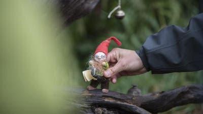 PH-Dozentzum Thema Waldkindergarten:«Kinder bewegen sich heutzutage zu wenig»