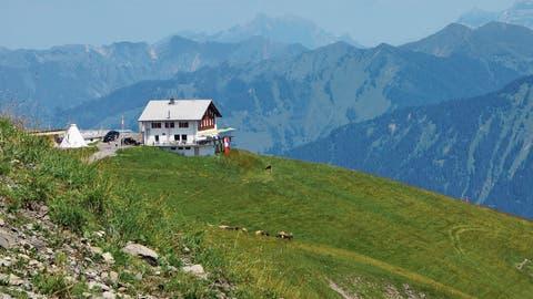 Gäste im Bärghuis Schönbüel sind so verschieden wie die Alpenkräuter