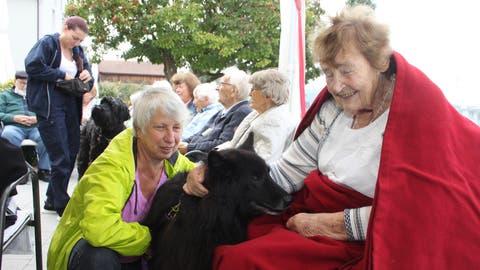 Der Besuch des SchäferhundesQuandor(vorne) fand bei einer Besucherin des Tertianum Neutalgrossen Anklang. (Bidl: PD)