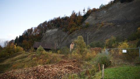 Das corpus delicti: Die ehemalige Mergelgrube Grisigen. (Bild: Corinne Glanzmann (Horw, 3. November 2014))
