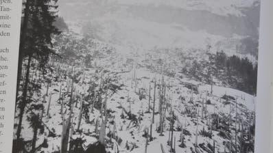 Blick ins Werdenberger Jahrbuch: 1999 zerstörte diese grosse Staublawine oberhalb Gams 50 Hektaren Bergwald. (Bild: Armando Bianco)