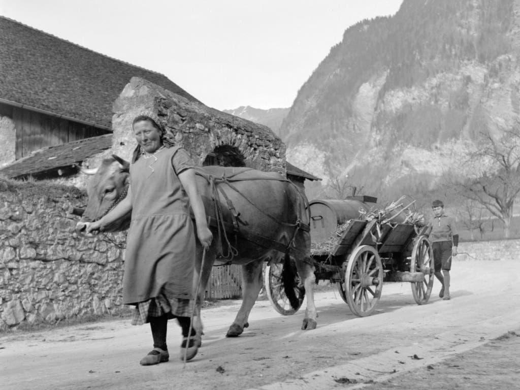 --- ARCHIVE --- AM 23. JANUAR 2019 BEGINNT DAS 300-JAHR-JUBILAEUM DES FUERSTENTUMS LIECHTENSTEIN. WIR ZEIGEN EINE SERIE VON PORTRAITS DER LANDBEVOELKERUNG UM 1940 --- Portrait der Landbevoelkerung in Liechtenstein im Kriegsjahr 1942. Baeuerin mit Kuhgespann und Guellenwagen. (Bild: KEYSTONE/PHOTOPRESS-ARCHIV/STR)