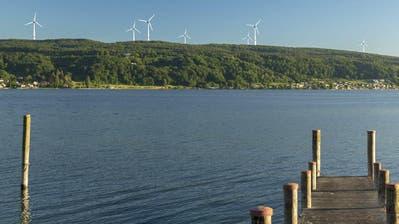 Die Visualisierung der Windpark-Gegner zeigt, wie die Windkraftanlagen auf dem Seerücken mit Sicht von der Insel Reichenau aussehen könnten. (Bild: PD/Pro Salen-Reutenen)