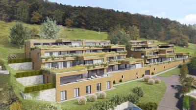 Innenverdichtung durch Terrassenwohnungen: Wo bisher eine Familie lebte, entsteht Wohnraum für 15 Familien. (Visualisierungen: PD)