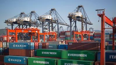 Ankeraktionär schützt Zuger Logistiker Ceva vor Übernahme