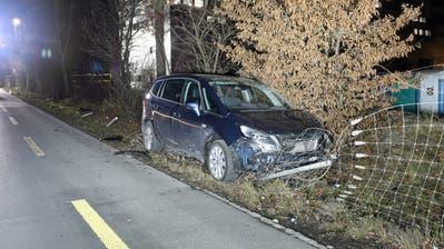 Das Auto fuhr auf die Gegenfahrbahn und dann in einen Zaun. (Bild: Luzerner Polizei)