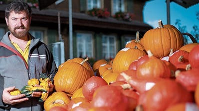 Daniel Rüttimann freut sich über die reiche Kürbisernte. B(ild: Maria Schmid, Cham, 10. Oktober 2019)