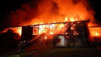 Feuerwehrleute kämpfen gegen die lodernden Flammen. (Bild: Kapo)