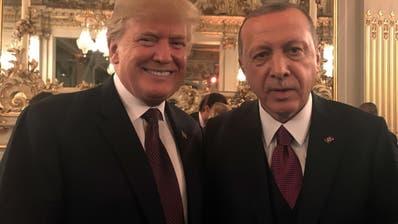 Erdogan: Wir können Trumps Tweets nicht mehr verfolgen