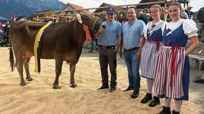 Viehschau in Grabs: JungkuhEdelea ist der Superstar des Tages