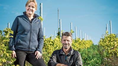 Karin und Roland Lenz in einem Weinberg mit Jungreben und ökologischen Ausgleichsflächen. (Bild: Reto Martin / Uesslingen-Buch, 17. Oktober 2019)