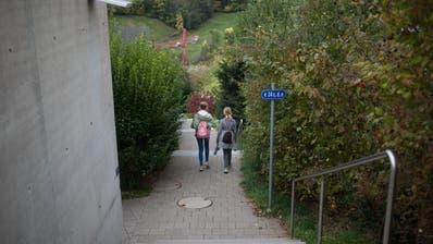 Der Hohermuthweg beim Kammelenberg wurde vor Kurzem fertig gestellt. Die steilen Treppen eignen sich nicht für Personen mit einer Gehbehinderung. (Bild: Benjamin Manser)