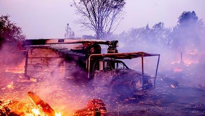 Waldbrände in Kalifornien wüten weiter – fast eine Million ohne Strom