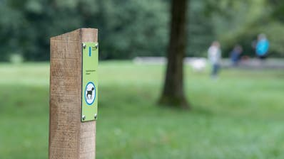 Solche Pfosten mit Signalisationen wurden verwüstet oder ausgerissen. (Bild: Nadia Schärli, Luzern13. August 2019)