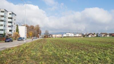 Die Parzelle 50440 für das Mehrgenerationenprojektim Eigentum der Stadt Frauenfeld liegt an der Sonnenhofstrasse im Westen Frauenfelds. (Bild: Donato Caspari)