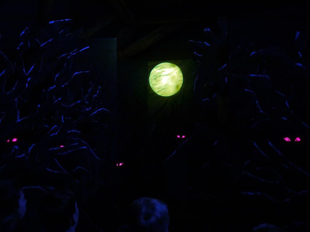 Im Kanton Luzern war vor 400 Jahren offenbar ein Werwolf-Aberglaube verbreitet - die glühenden Augenpaare im neuen Geisterhaus des historischen Museums nehmen diese historische Gegebenheit auf. (Bild: KEYSTONE/ALEXANDRA WEY)