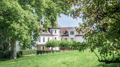 Kreuzlingen TG - Die Wiese vor dem Schloss Brunnegg in Kreuzlingen darf nicht bebaut werden.