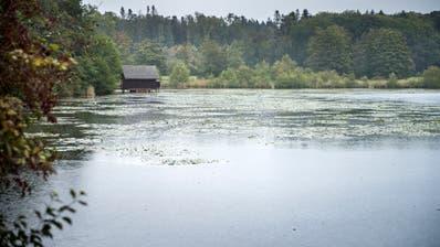 Der Bommer Weiher in der Gemeinde Kemmental ist ein Flachmoor und Amphibienlaichgebiet von nationaler Bedeutung. (Reto Martin)
