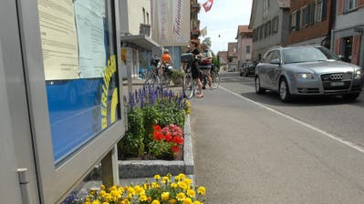 Die Seestrasse in Berlingen. (Bild: Nana do Carmo)
