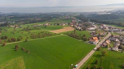 Im Gebiet links neben der Rorschacherstrasse in Mörschwil soll die neue Deponie entstehen. (Bild: Thomas Hary - 18. September 2018)