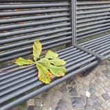 Eine Sitzbank im Herbst (Bild: PD)
