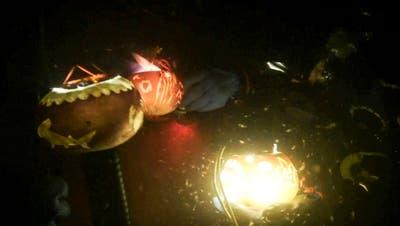 Die beleuchteten Räben ziehen Kleinlebewesen an. (Bild: PD)