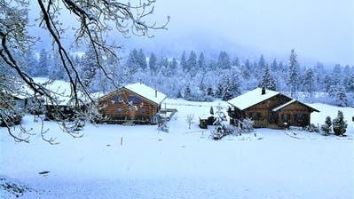 (Screenshot: Institut für Schnee- und Lawinenforschung)