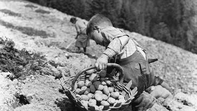 Kartoffeln setzen statt spielen und zur Schule gehen – auch für Schweizer Kinder lange Realität. (Bild: Keystone, Entlebuch 1941)
