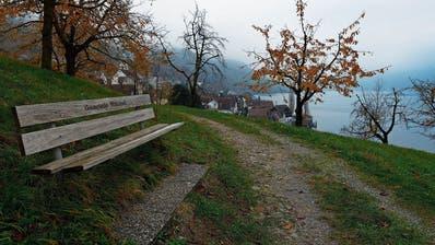 Der Panoramaweg soll unterhalb der Bahnlinie und oberhalb des Eichofwegs durchführen. Das Bild zeigt die Blickrichtung Walchwil. (Bild: Stefan Kaiser, 25. November 2019)