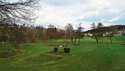 Der Wiler Stadtpark lässt auf sich warten: IG Weierwisenwirft Stadtrat in offenem Brief Untätigkeit vor