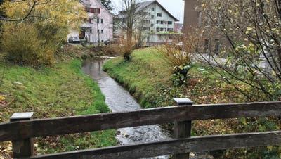 Im Zentrumsbereich wurden am Dorfbach in den Jahren 2010, 2015 und 2019 nennenswerte Unterhaltsarbeiten durchgeführt. (Bild: Andrea Häusler)