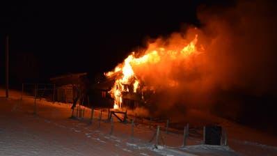 200 Schweine bei Brand in Hundwil AR getötet