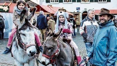 Ein stimmiger Adventstag auf Schloss Herdern