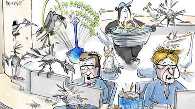 Dein Freund und Tierpfleger. 2019 hat die Stadtpolizei viele Erfahrungen mit Tieren gesammelt: Ausgebüxte Pferde, verirrte Rehkitze, ein Esel auf dem Bahngleis und Ratten im Pärklein hielten sie auf Trab. Die Vogelpflegestation der Stadt ist immer noch verwaist. Vielleicht ist eine Kombination mit dem Polizeiposten die Lösung? (Illustration: Corinne Bromundt - 28. Dezember 2019)