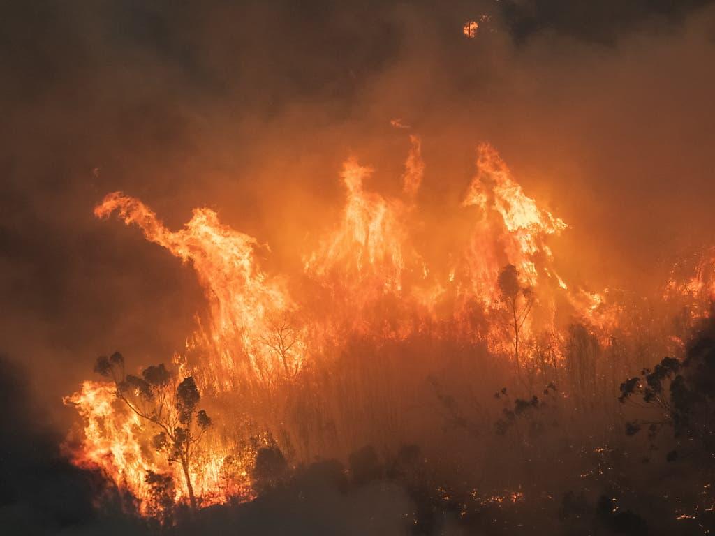 Die Buschbrände in Australien wüten schier unermüdlich.