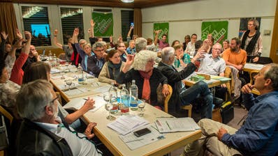 Die Mitgliederversammlung der Grünen Thurgau favorisierte 2015 eine Listenverbindung für die Nationalratswahlen mit der SP und der GLP.