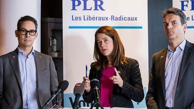 Rahmenabkommen: FDP-Fraktion sagt «Ja aus Vernunft» - Grüne wollen nachverhandeln