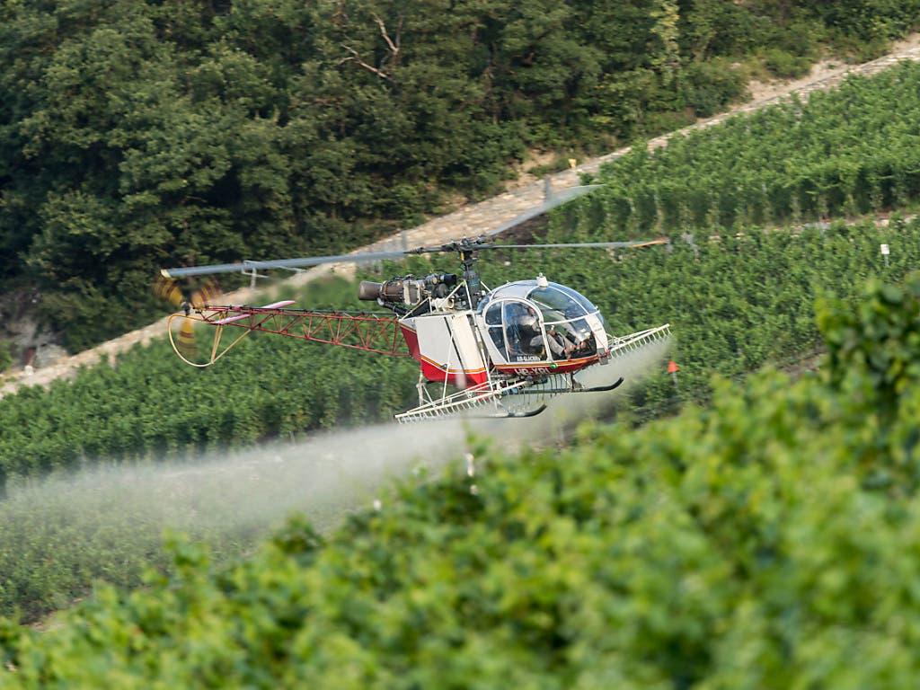 """Der Einsatz synthetischer Pestizide in der Landwirtschaft soll verboten werden. Das fordert die Gruppe""""future3.0», die hinter der Initiative «Für eine Schweiz ohne synthetische Pestizide» steht. (Bild: KEYSTONE/ALESSANDRO DELLA VALLE)"""