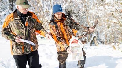 Stacheldraht lässt Wildtiere elendiglich verenden: St.Galler Jäger sammeln Unterschriften gegen Todesfallen