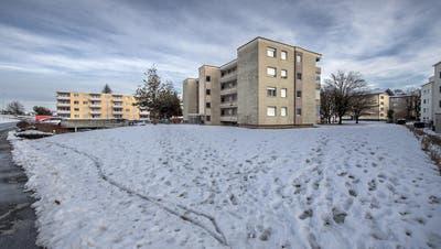 Das Grundstück Lehn soll durch die Teilrevision der Ortsplanung in die Wohnzone eingeteilt werden. (Bild: Pius Amrein, Rothenburg 8. Februar 2019)